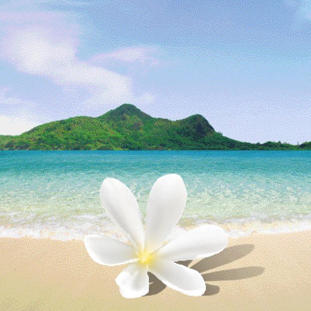 Polynesian Island Tiaré